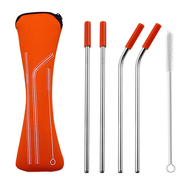 Reusable Stainless Steel Straws with Carry Bag