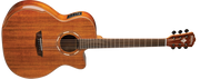 Washburn WCG55CE Comfort Acoustic-Electric Guitar
