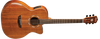 Washburn WCG55CE-GCGADLX Comfort Acoustic-Electric Guitar with Hardshell Case