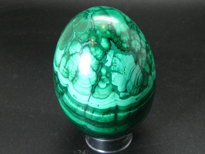 Large Rich Vivid Vibrant Green Malachite Egg From Congo - 3.5""