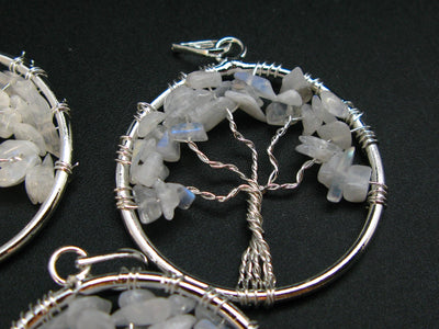 Set of Three Natural Moonstone Tree of Life Healing Necklace Pendant