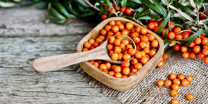 image of sea buckthorn