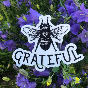 Bee Grateful Die-Cut Vinyl  Sticker Decal