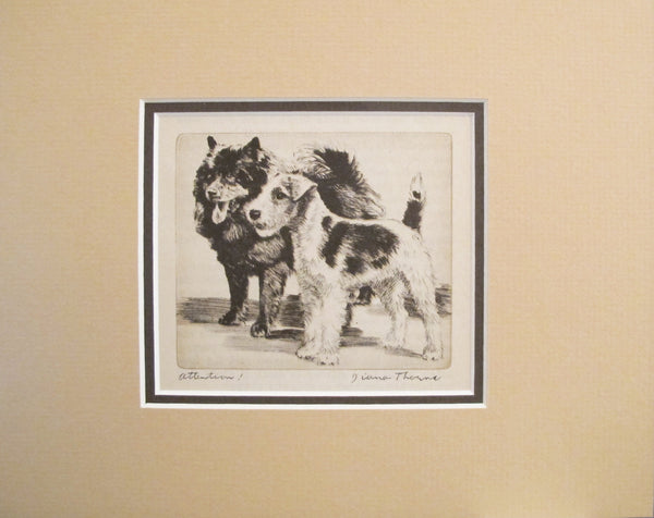 "1936 American Dog Portrait - ""Attention!"" by Diana Thorne"