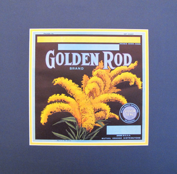 "1930 - 1940 Original Vintage Flower Seeds Label - ""Golden Rod"""