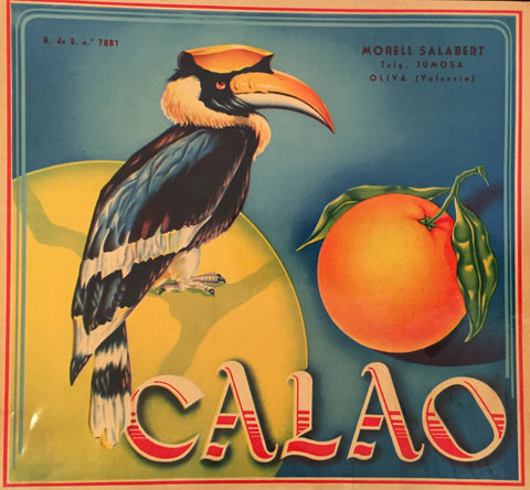 1930-40 Original Vintage Spanish Label, Toucan