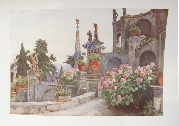 1905 Original Italian Print - Italian Travel Colour Plate - In the Garden, Isola Bella, Lago Maggiore
