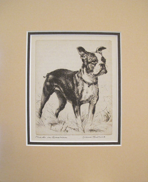 "1936 American Dog Portrait, ""Made in America"""