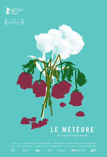 2012 Contemporary Movie Poster - Le Meteore, film by Francois Delisle