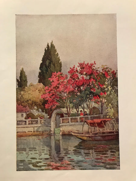 1905 Original Italian Print - Italian Travel Colour Plate - A Garden by the Lake, Lago D'Orta