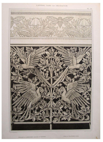 1898 French Decorator Pochoir -  Grasshopper and Parrots - Verneuil