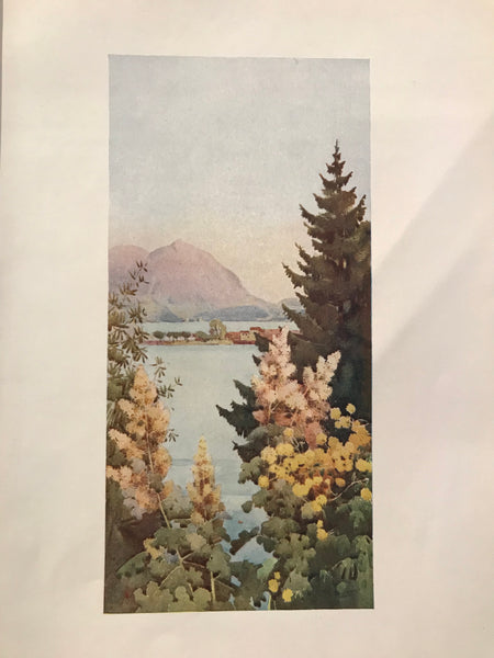 1905 Original Italian Print - Italian Travel Colour Plate - A Garden