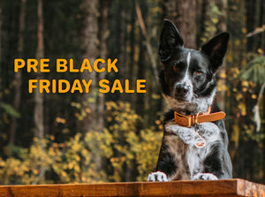 PRE Black Friday Sale 2019