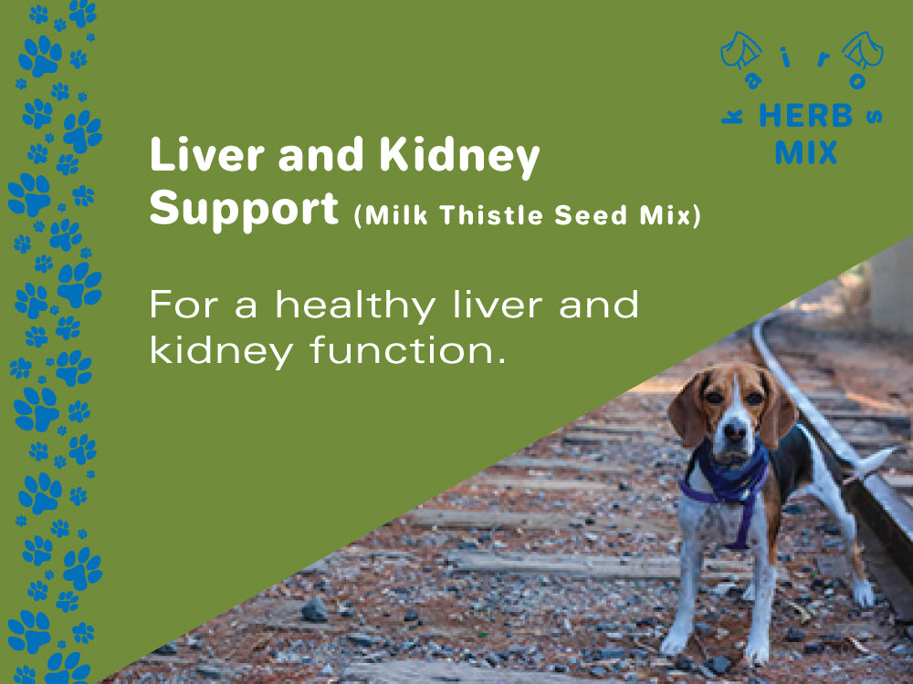 Liver and Kidney Support (Milk Thistle Seed Mix)