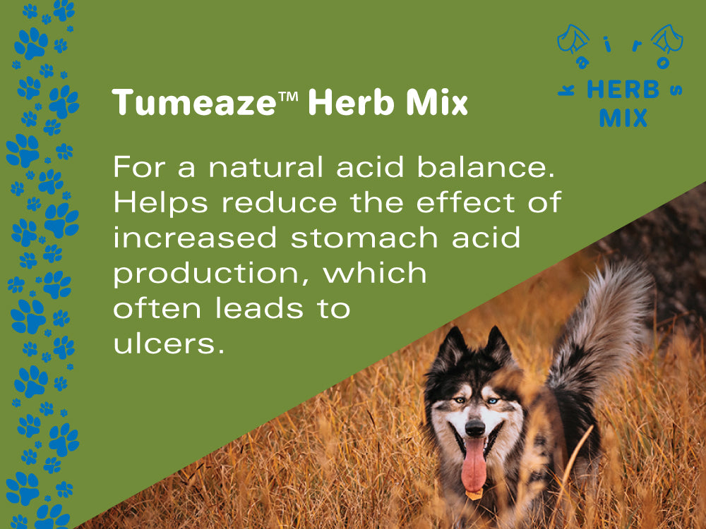 TumEaze™ Herb Mix for Dogs