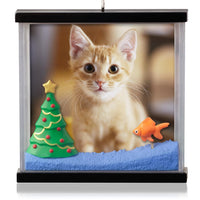 Hallmark 2014 Picture Purrfect Photo Holder Ornament