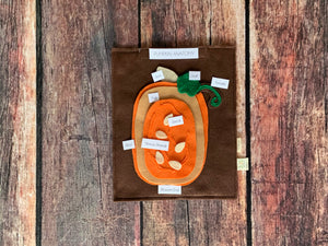 Pumpkin Plant Anatomy Set