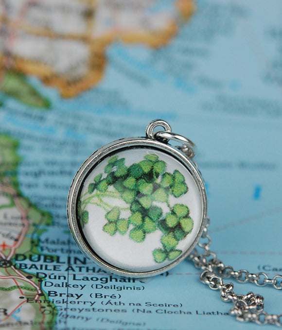 National Flowers of the Celtic Isles