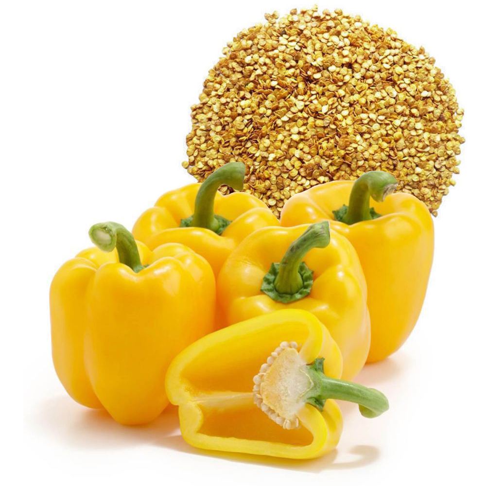 Yellow Capsicum Seeds