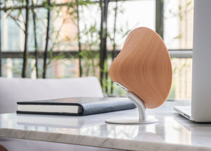 Gingko Halo One mini Bluetooth Speaker