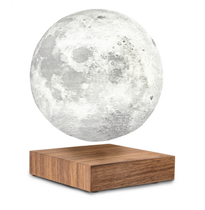 Gingko Smart Moon Lamp