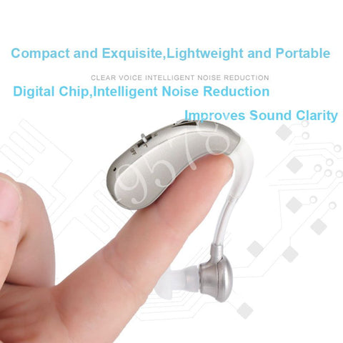 Rechargeable Digital Hearing Aids