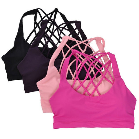 Image of Padded Sports Bra