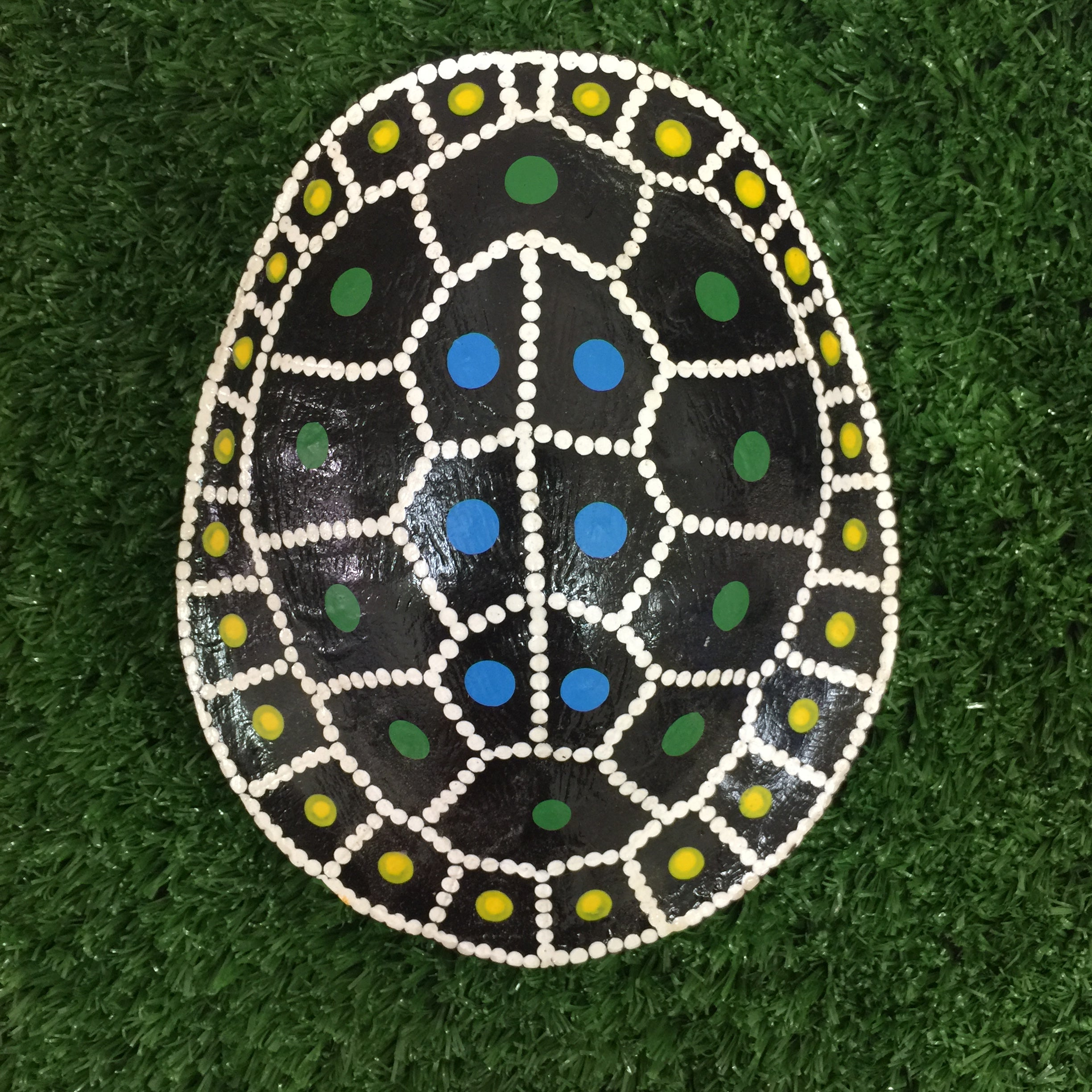 'Bingis' | TURTLE SHELL | Painted #BINGIS002