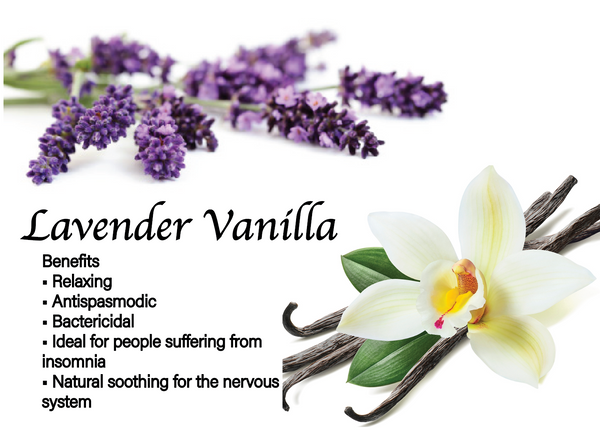 Lavender Vanilla Essential Oil Air Freshener 60ml (Case of 12)