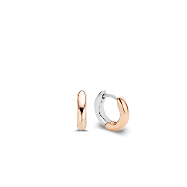 TI SENTO - Milano Earrings 7210SR