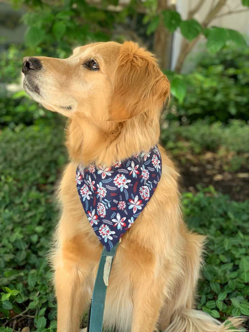 The June Bandana
