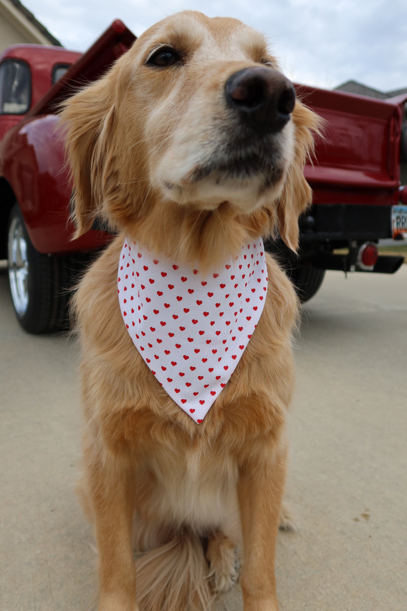 Cherry Hearts Bandana