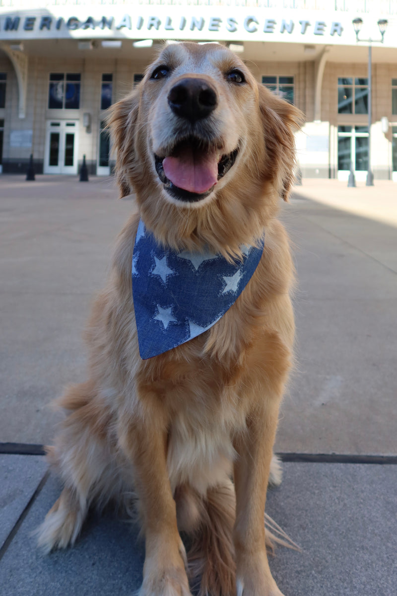 Denim Stars Bandana