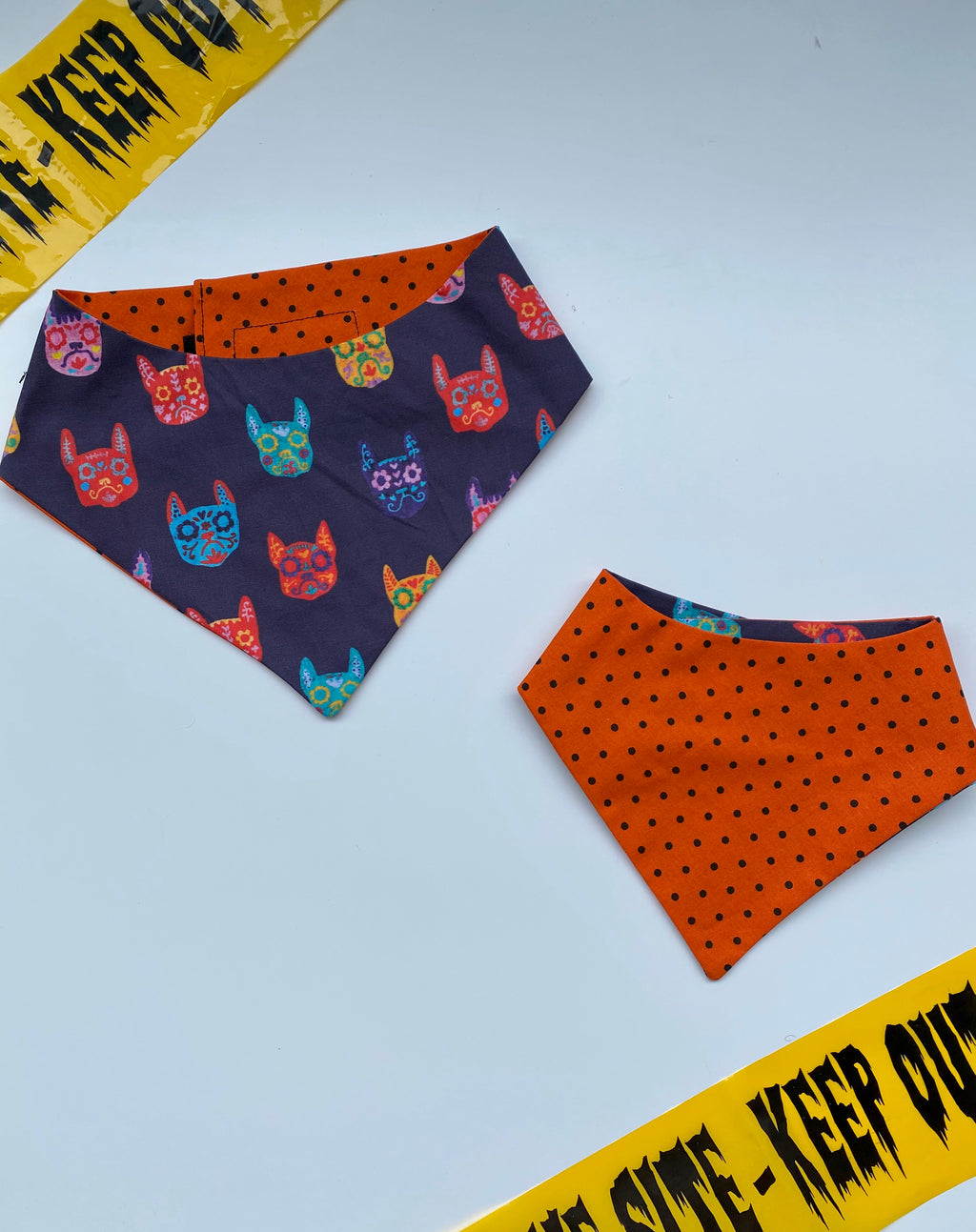 Frenchie Catrinas  Bandana