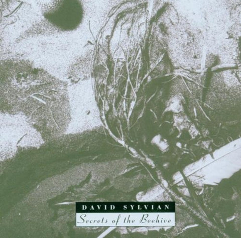 David Sylvian - Secrets Of The Beehive Audio CD
