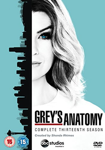 Greys Anatomy - Season 13 [DVD]