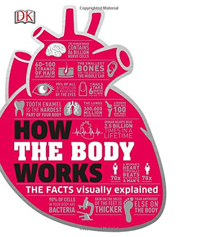 How the Body Works: The Facts Simply Explained (Dk Knowledge)
