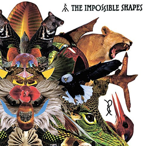 Impossible Shapes - The Impossible Shapes Audio CD