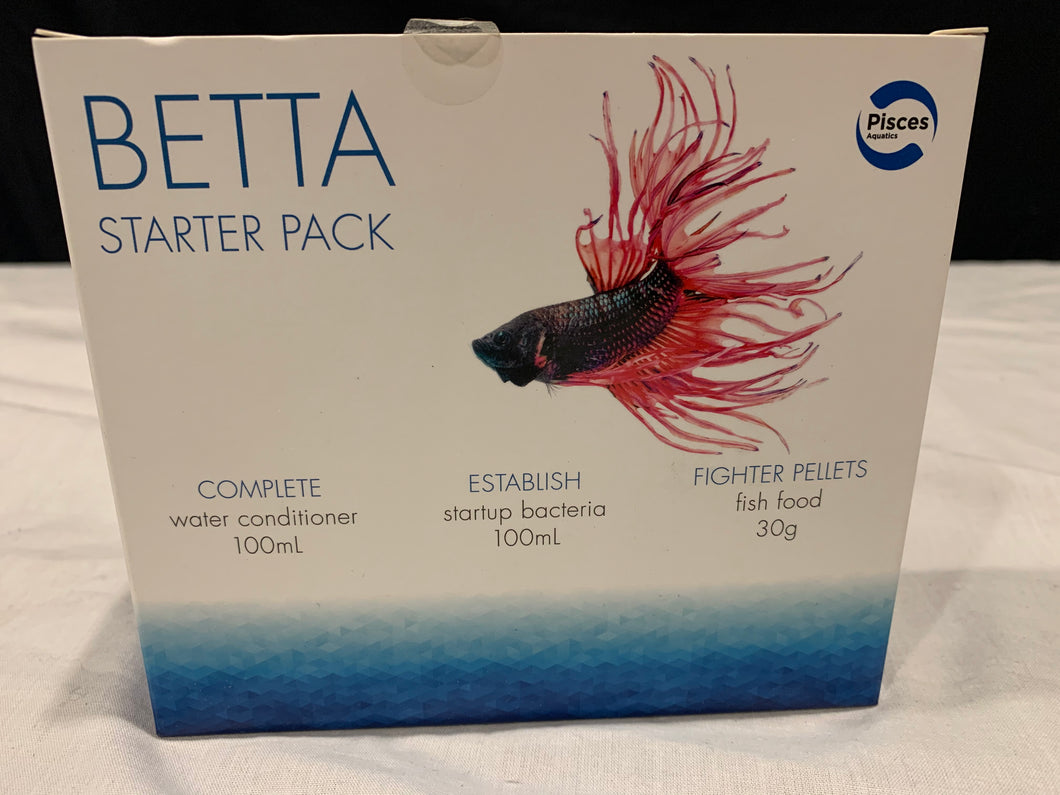 Betta fish starter pack