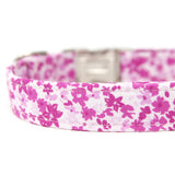RTS-Pink Floral Dog Collar | Size Medium