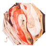 Ballet Shoes Umbrella