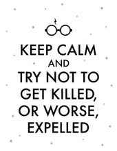 Load image into Gallery viewer, Keep Calm And Try Not To Get Killed, Or Worse, Expelled Digital Art Print