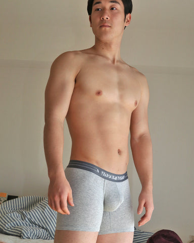 UNDERSTAND<br>BOXER-BRIEF (GREY/U1033)