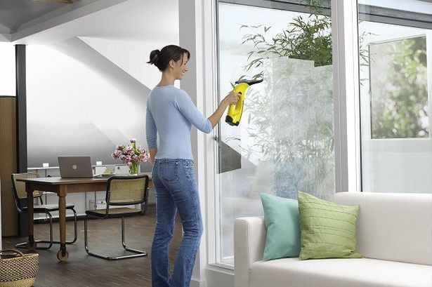 Karcher Window Vac - Deluxe