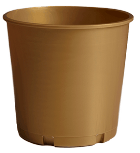 176oz pearl gold church offering bucket
