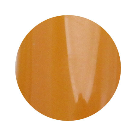 [No Top Function] para Polish Color Gel F028 apricot