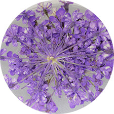 SHAREYDVA Lace Dry Flower Purple