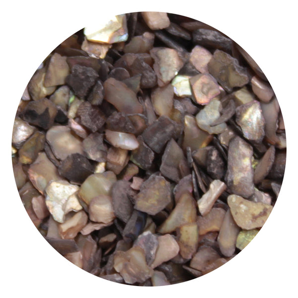 SHAREYDVA Grain Shell Stone  Brown