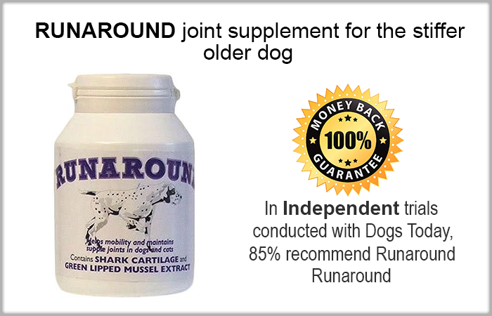 runaround canine mobility supplement