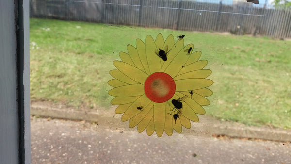 Non-toxic Flytrap Sunflower Window Stickers